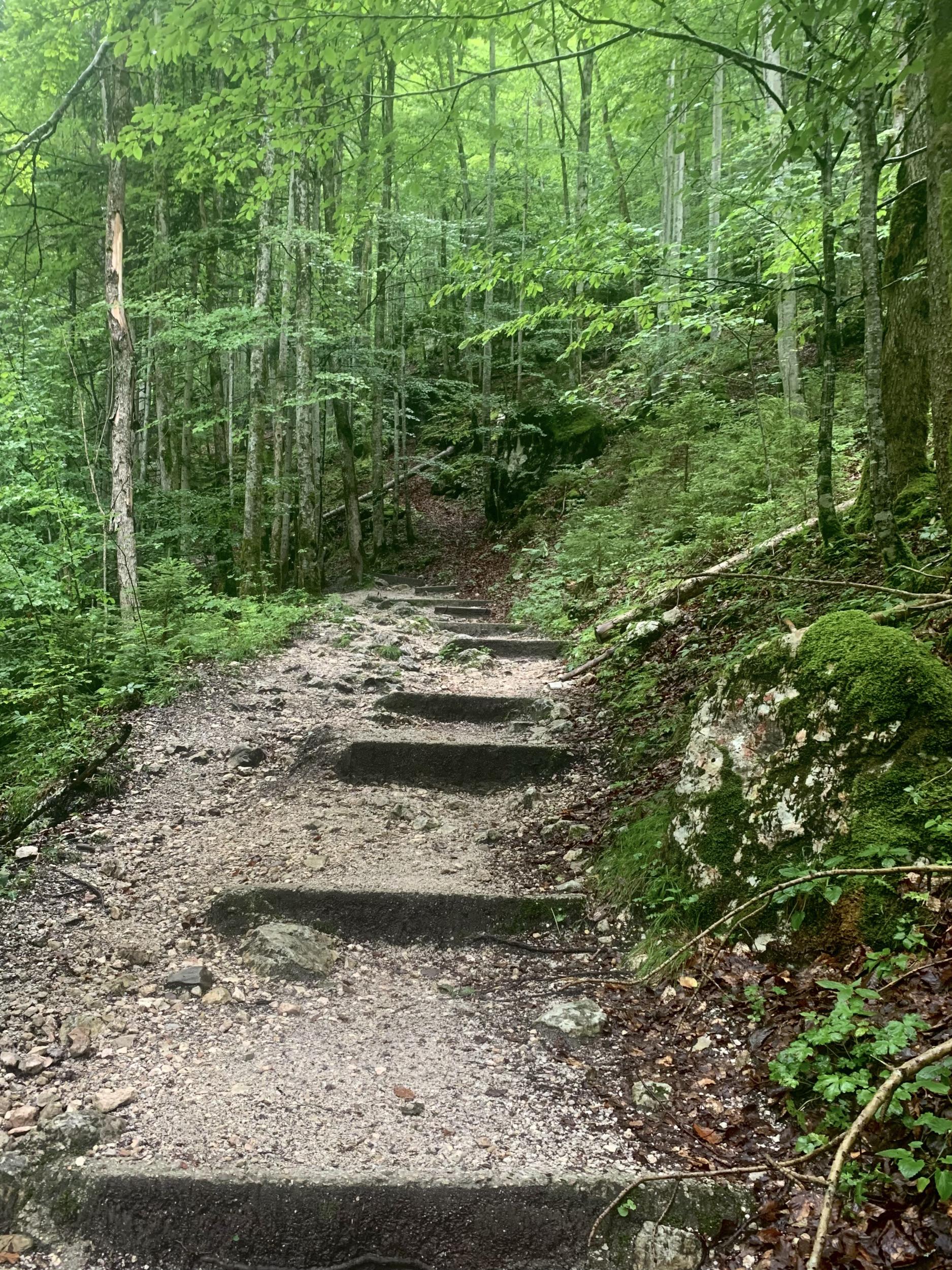 Aufgang zu Waldbachstrub Wasserfall