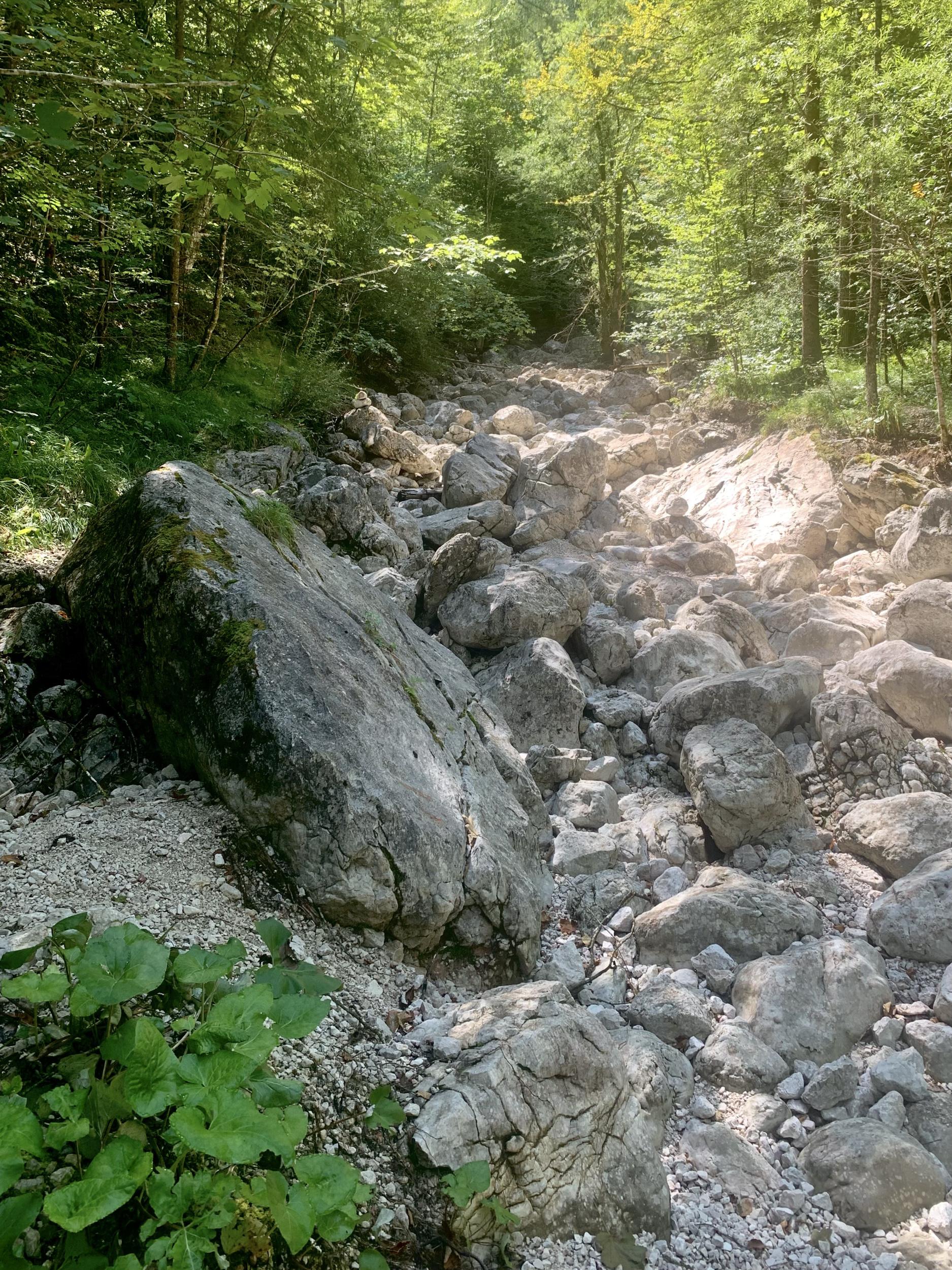 Das leere Bachbett des Brandbaches im Echerntal von Hallstatt