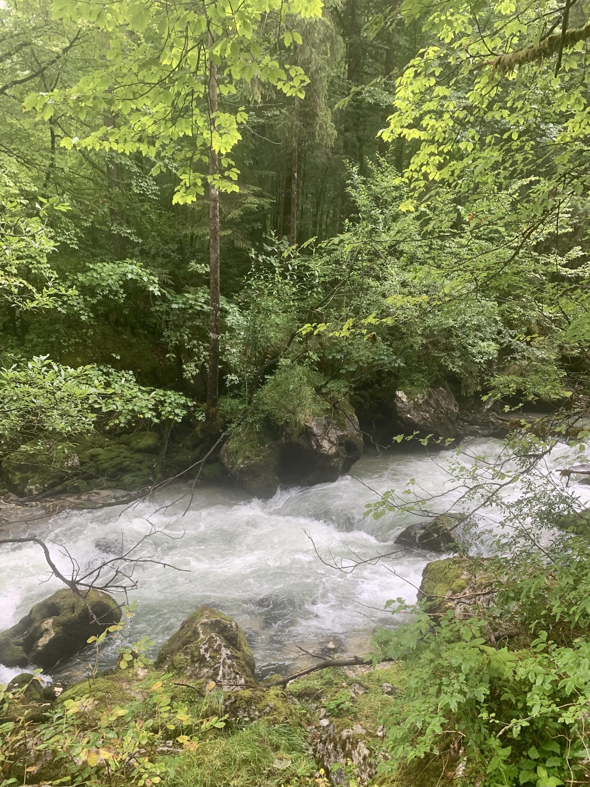 Echern Valley Waldbach Creek