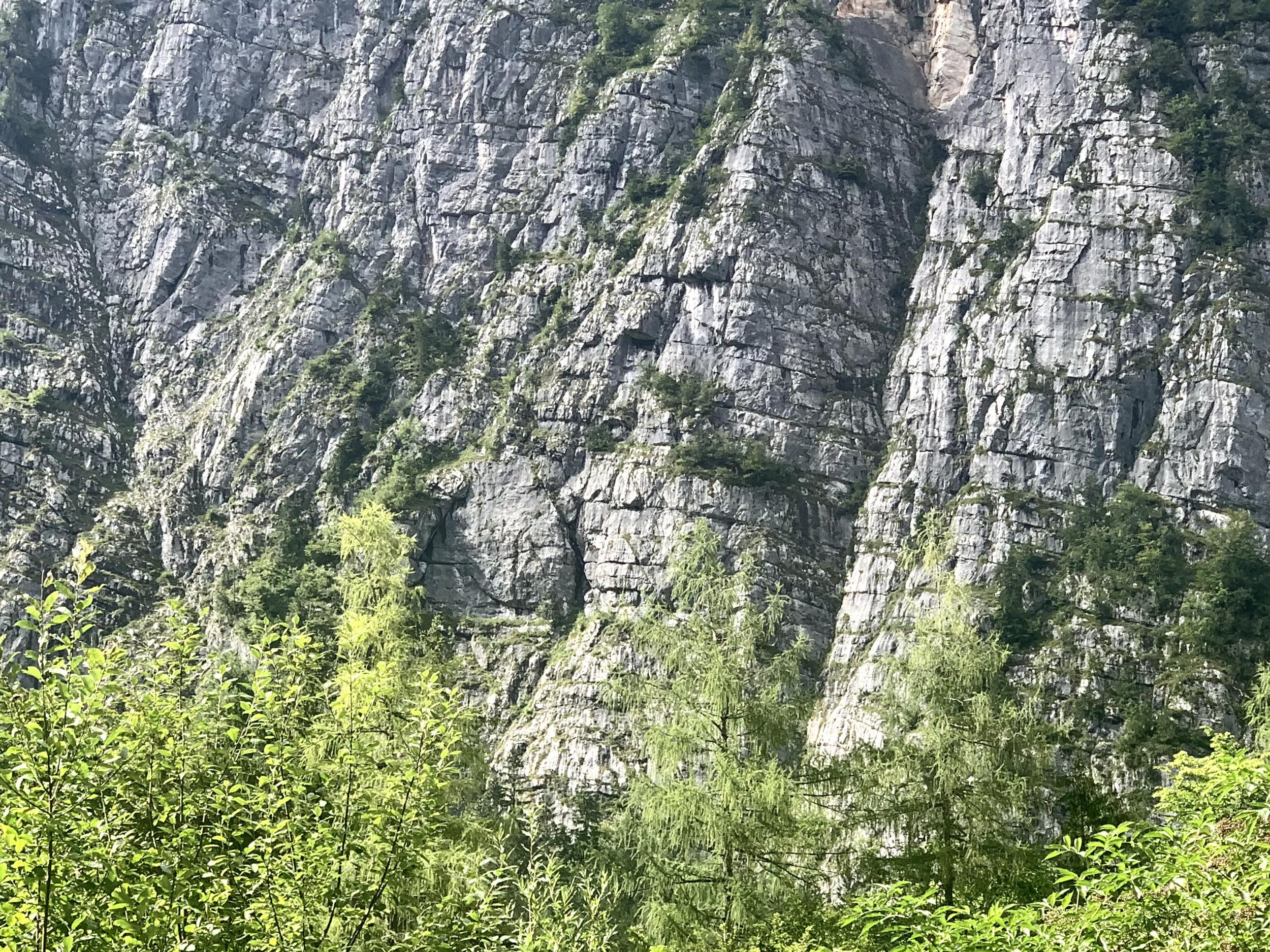 Die Echernwand vom Fuße der Hirlatzwand aus gesehen.