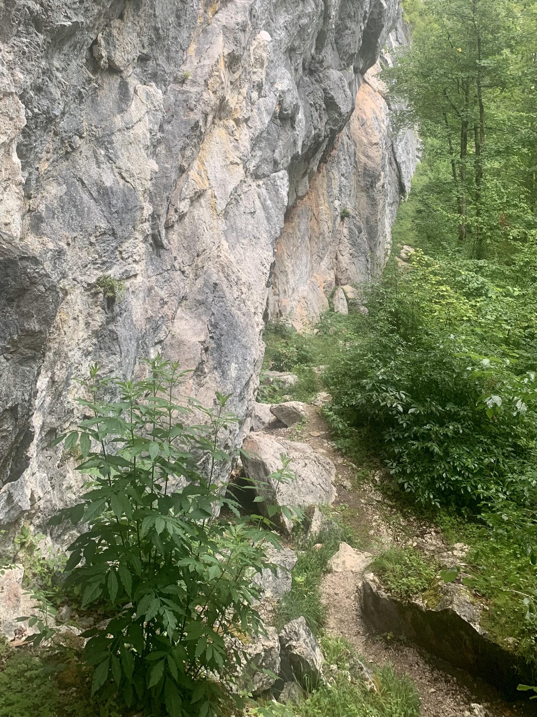 Am Fuße der Echernwand in Hallstatt