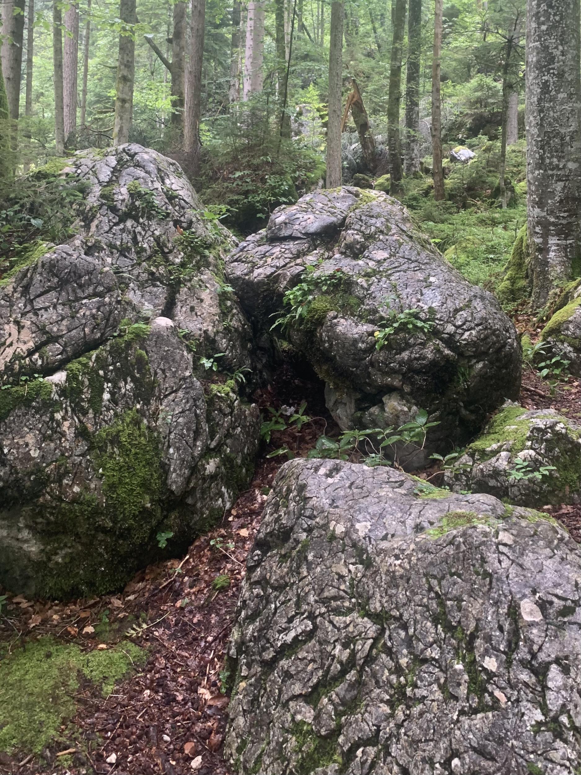 Felsbrocken aus der Echernwand
