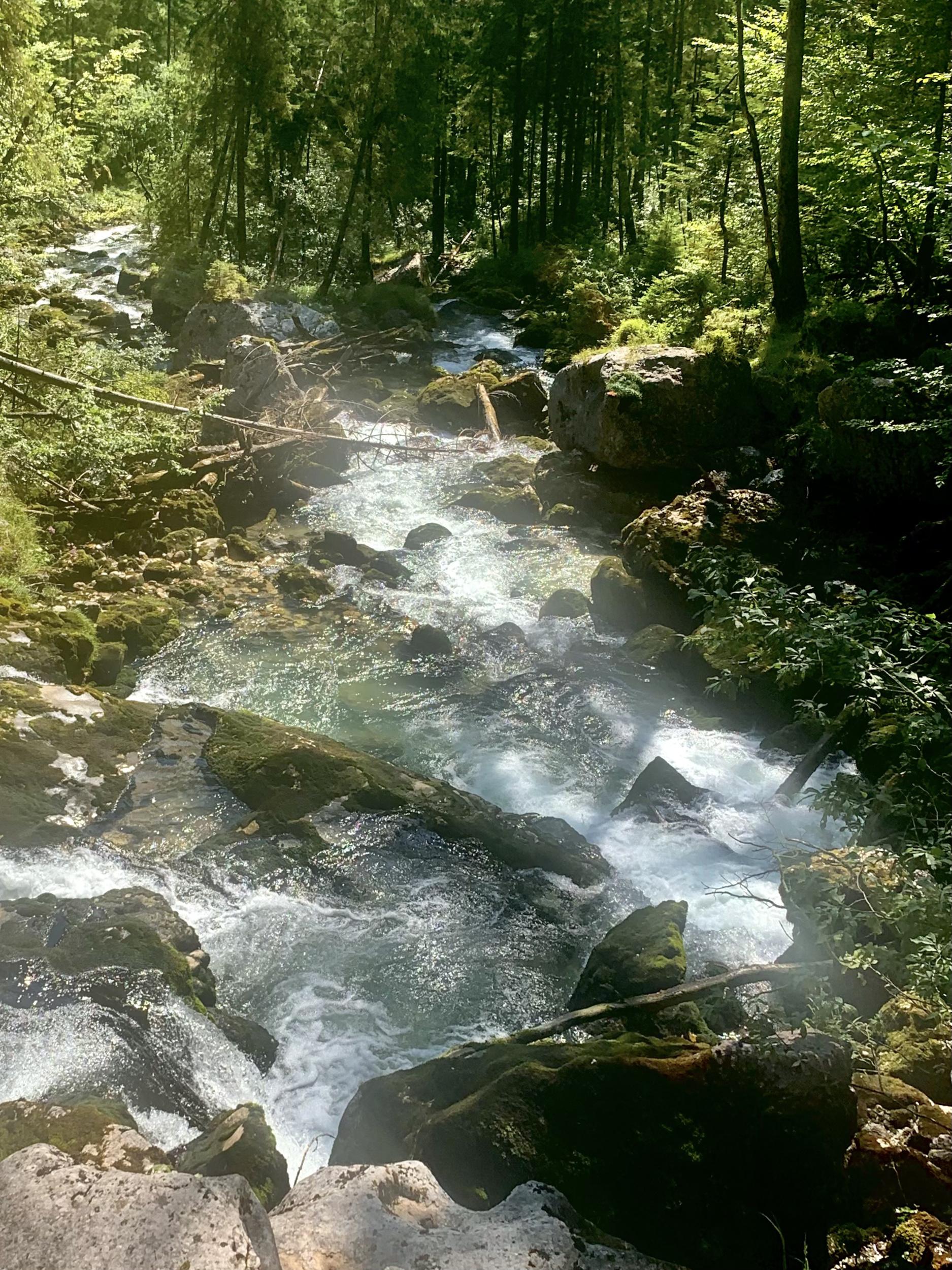 Waldbach bei der Strubbrücke mit weniger Wasser